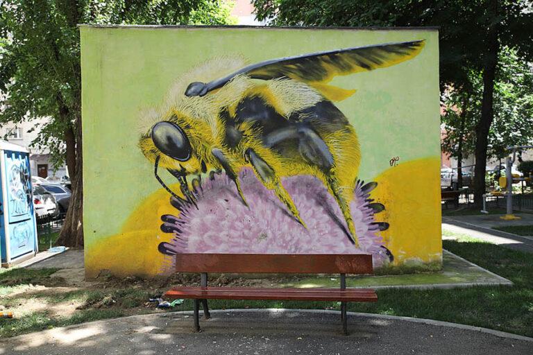 arhive graffiti  lunoxconstructro